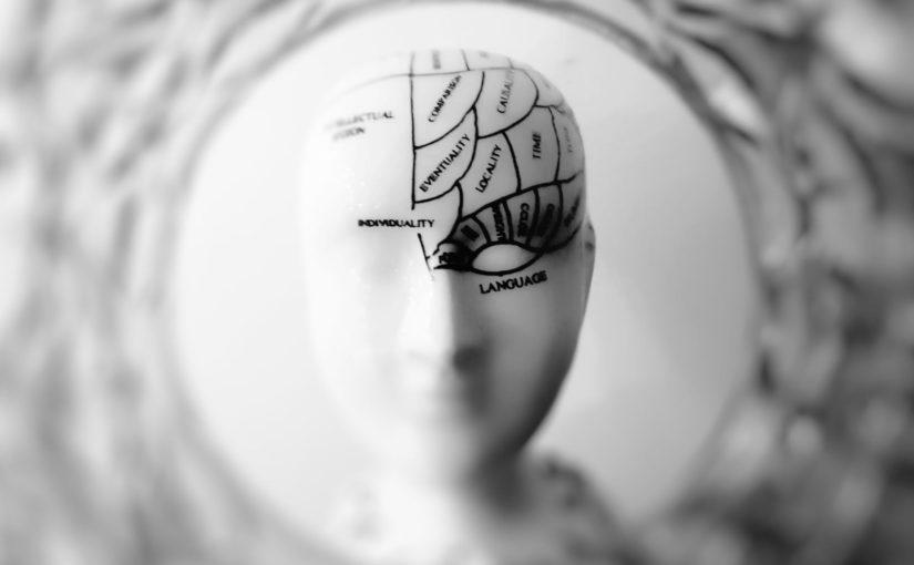 Recopilatorio de hilos sobre psicología cognitiva de la memoria y el aprendizaje, por @hruizmartin